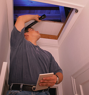 Healthy Home Inspection